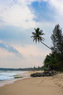 Tangalle Beach on the south coast of Sri Lanka, Asiaの写真素材 [FYI03787777]