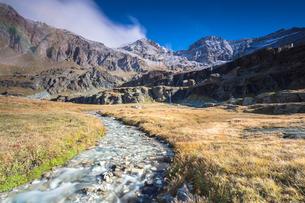 Creek flowing between meadows, Alpe Fora, Malenco Valley, province of Sondrio, Valtellina, Lombardy,の写真素材 [FYI03787829]