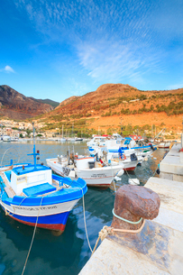Fishing boats at the harbor, Castellammare del Golfo, province of Trapani, Sicily, Italy, Mediterranの写真素材 [FYI03787893]