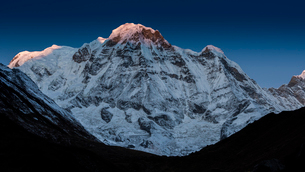 The first rays of light on the summit of Annapurna South, Himalayas, Nepal, Asiaの写真素材 [FYI03788037]