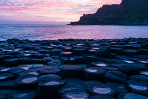 Basalt columns at the Giant's Causeway, UNESCO World Heritage Site, County Antrim, Ulster, Northernの写真素材 [FYI03788101]