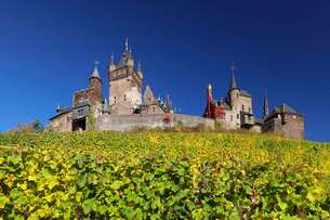 Reichsburg Castle and vineyards in autumn, Cochem, Moselle Valley, Rhineland-Palatinate, Germany, Euの写真素材 [FYI03788308]