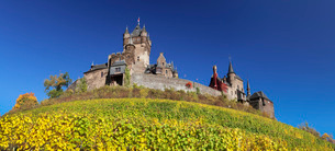 Reichsburg Castle and vineyards in autumn, Cochem, Moselle Valley, Rhineland-Palatinate, Germany, Euの写真素材 [FYI03788316]