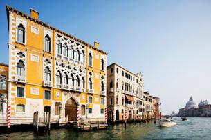 Historic Venetian buildings on the Grand Canal, Venice, UNESCO World Heritage Site, Veneto, Italy, Eの写真素材 [FYI03788383]
