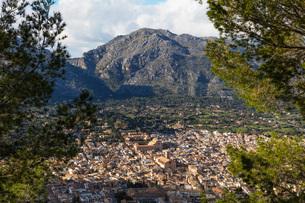 Aerial view of old town, Pollenca, Majorca, Balearic Islands, Spain, Mediterranean, Europeの写真素材 [FYI03788386]