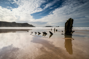 Helvetia shipwreck and clouds reflected in wet sand, at low tide, Rhossili Bay, Gower Peninsula, Souの写真素材 [FYI03788613]