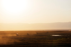 Tourist jeeps on safari at sunrise, Ngorongoro Crater Conservation Area, UNESCO World Heritage Site,の写真素材 [FYI03788667]