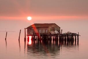 Old fishermen's shack at sunset in Venetian lagoon off the coast of Pellestrina, Venice, Veneto, Itaの写真素材 [FYI03788784]