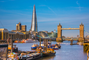 Tower Bridge over River Thames and The Shard, London, England, United Kingdom, Europeの写真素材 [FYI03788997]