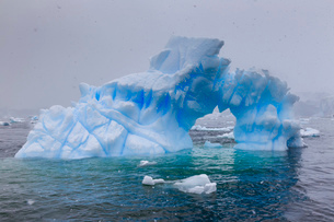 Blue iceberg arch in snowy weather, from sea level, Waterboat Point, Paradise Bay, Graham Land, Antaの写真素材 [FYI03789048]
