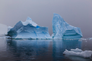 Blue icebergs in snowy weather, from sea level, Waterboat Point, Paradise Bay, Graham Land, Antarctiの写真素材 [FYI03789050]