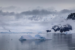 Low lying mist and clouds over mountains, glaciers and icebergs of Paradise Bay, calm waters, Antarcの写真素材 [FYI03789064]