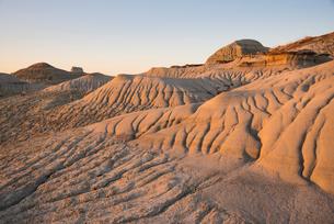 Rock formations and hoodoos in Dinosaur Provincial Park, UNESCO World Heritage Site, Alberta Badlandの写真素材 [FYI03789221]