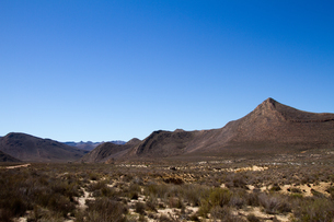 Landscape of the Aquila Safari Game Reserve, Cape Town, South Africa, Africaの写真素材 [FYI03789226]