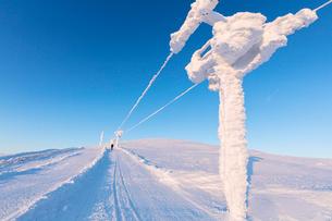 Hiker walks on frozen path, Pallas-Yllastunturi National Park, Muonio, Lapland, Finland, Europeの写真素材 [FYI03789286]
