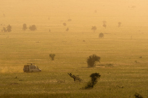 A safari vehicle driving across the plains of Tsavo at sunset, Kenya, East Africa, Africaの写真素材 [FYI03789453]
