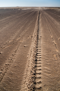 Tyre tracks delineate a seemingly endless straight road in Namib Desert near the infamous Skeleton Cの写真素材 [FYI03789742]