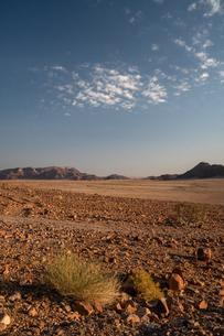 Mountains and gravel plain, Sossusvlei area, at dusk, Namib-Naukluft, Namibia, Africaの写真素材 [FYI03789753]