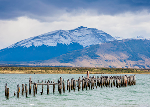 Gaffos Pier, Admiral Montt Gulf, Puerto Natales, Ultima Esperanza Province, Patagonia, Chile, Southの写真素材 [FYI03789780]