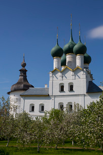 Church of Gregory the Theologian, with fruit trees in foreground, Kremlin, Rostov Veliky, Golden Rinの写真素材 [FYI03789838]