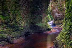 The gorge at Finnich Glen (Devils Pulpit) near Killearn, Stirlingshire, Scotland, United Kingdom, Euの写真素材 [FYI03789843]