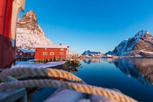 Traditional fisherman's huts (Rorbu), Reine Bay, Lofoten Islands, Nordland, Norway, Europeの写真素材 [FYI03789876]
