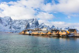 Typical fishermen's huts (Rorbu), Sakrisoy, Lofoten Islands, Nordland, Norway, Europeの写真素材 [FYI03789979]