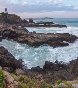 The Cathedral Rocks along the Grand Pacific Drive, Kiama, New South Wales, Australia, Pacificの写真素材 [FYI03790004]