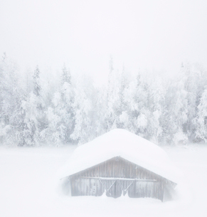 Elevated panoramic view of snow covered hut in the mist, Levi, Kittila, Lapland, Finland, Europeの写真素材 [FYI03790021]