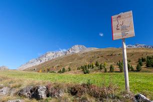 Hiking signage of Stelvio National Park, Val Vezzola, Valdidentro, Valtellina, Sondrio province, Lomの写真素材 [FYI03790234]