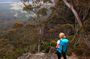 A woman hiking in the Blue Mountains, New South Wales, Australia, Pacificの写真素材 [FYI03790319]