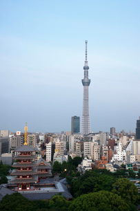 View over city with Tokyo Skytree and Five-Storied Pagoda, Tokyo, Japan, Asiaの写真素材 [FYI03790373]