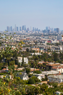 View of Downtown skyline from Hollywood Hills, Los Angeles, California, United States of America, Noの写真素材 [FYI03790415]