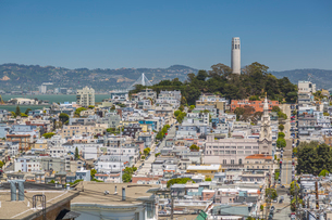 View of Coit Tower from Russian Hill, San Francisco, California, United States of America, North Ameの写真素材 [FYI03790420]