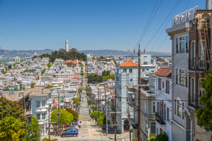 View of Coit Tower from Russian Hill, San Francisco, California, United States of America, North Ameの写真素材 [FYI03790424]
