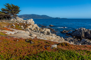 View of Carmel Bay and rocky shoreline at Pebble Beach, 17 Mile Drive, Peninsula, Monterey, Californの写真素材 [FYI03790568]