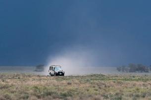 A safari vehicle driving in Ndutu, Ngorongoro Conservation Area, Serengeti, Tanzania, East Africa, Aの写真素材 [FYI03790596]