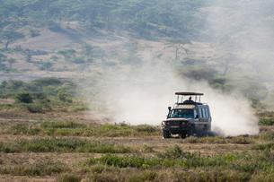 A safari vehicle driving in the Ndutu area, Ndutu, Ngorongoro Conservation Area, Serengeti, Tanzaniaの写真素材 [FYI03790613]