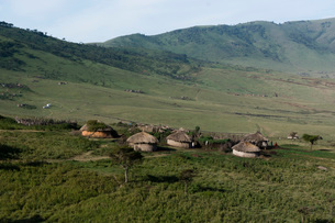 A Masai village in the Ngorongoro Conservation Area, Serengeti, Tanzania, East Africa, Africaの写真素材 [FYI03790624]