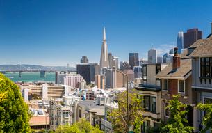 Street view of Transamerica Pyramid and Oakland Bay Bridge, San Francisco, California, United Statesの写真素材 [FYI03790807]