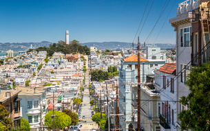 View of Coit Tower from Russian Hill, San Francisco, California, United States of America, North Ameの写真素材 [FYI03790809]