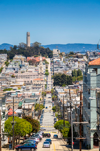 View of Coit Tower from Russian Hill, San Francisco, California, United States of America, North Ameの写真素材 [FYI03790810]