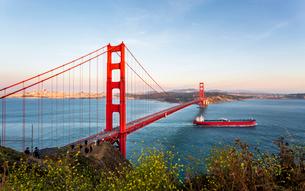 View of Golden Gate Bridge from Golden Gate Bridge Vista Point at sunset, San Francisco, California,の写真素材 [FYI03790860]