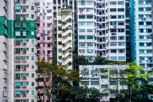 Flats in an apartment block, Hong Kong Island, Hong Kong, China, Asiaの写真素材 [FYI03791131]