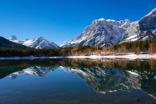 Wedge Pond in autumn, Kananaskis Country, Alberta, Canada, North Americaの写真素材 [FYI03791255]