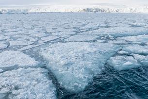 Palanderbukta Bay, pack ice pattern, Gustav Adolf Land, Nordaustlandet, Svalbard archipelago, Arcticの写真素材 [FYI03791295]