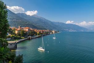 Elevated view of Cannobio and Lake Maggiore, Lake Maggiore, Piedmont, Italian Lakes, Italy, Europeの写真素材 [FYI03791395]