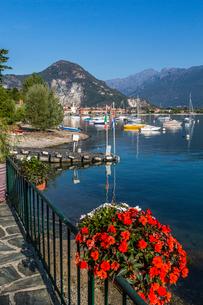 View of Feriolo and boats on Lake Maggiore, Lago Maggiore, Piedmont, Italian Lakes, Italy, Europeの写真素材 [FYI03791419]
