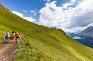 Hikers walk on Viel del Pan Path near Pordoi Pass, Fassa Valley, Trentino, Dolomites, Italy, Europeの写真素材 [FYI03791600]