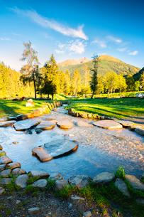 Morning in the park in Val Sozzine, Ponte di Legno, Brescia province, Lombardy, Italy, Europeの写真素材 [FYI03791604]